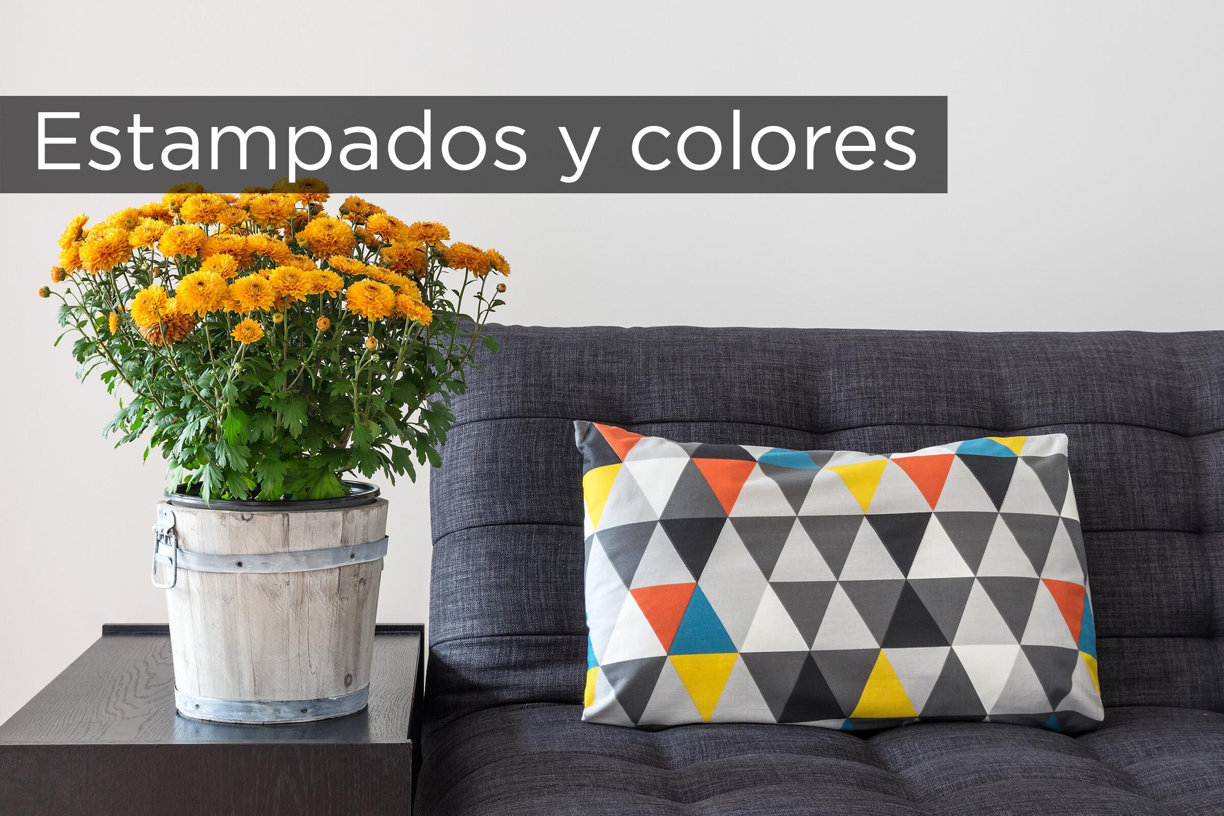 Estampados Y Colores